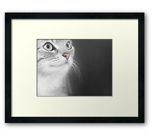 Little Willow Framed Print