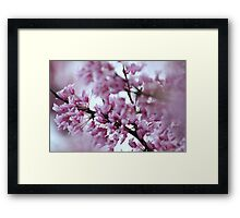 A Thousand Blossoms Framed Print