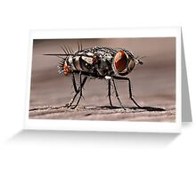 Superfly! Greeting Card