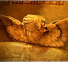 Angel Fount by LaRoach