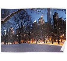 Central Park Lights Poster