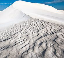 Dune by Mieke Boynton