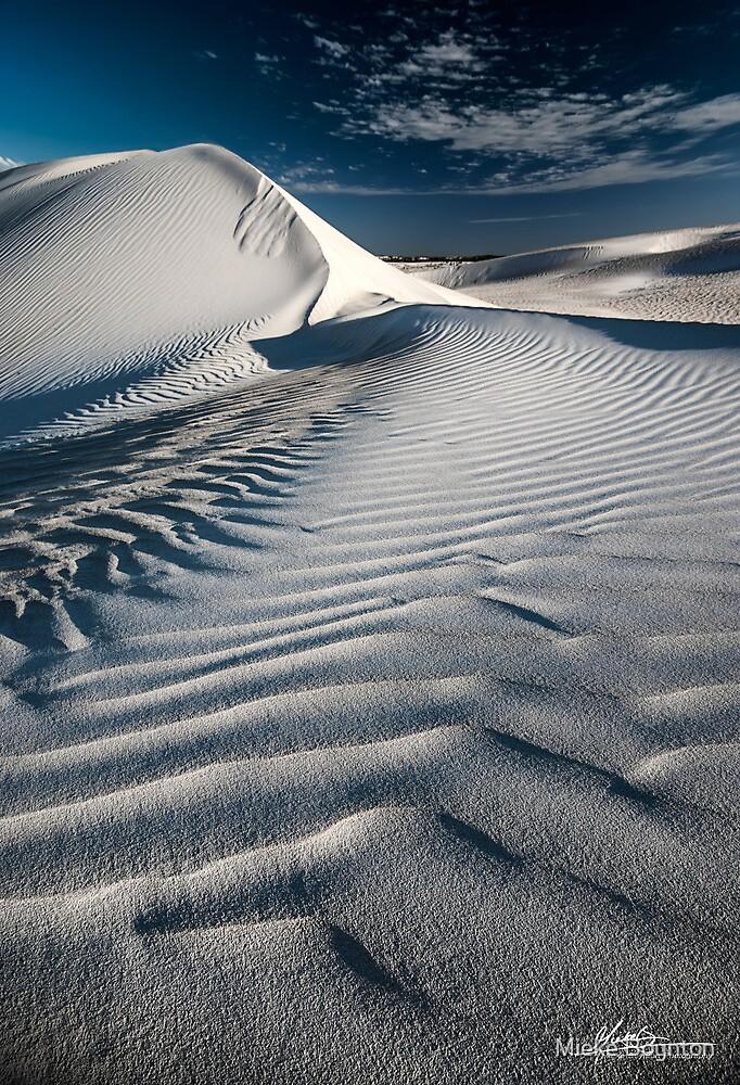 Dune Drifts by Mieke Boynton