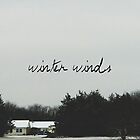 Winter Winds by danf240