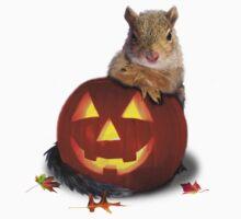 Halloween Squirrel by jkartlife