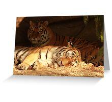 Waking Dreams Greeting Card