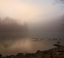 "Foggy Bottom Sunrise by Michael "" Dutch "" Dyer"
