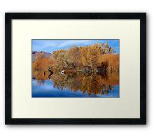 Reflective Moments Framed Print