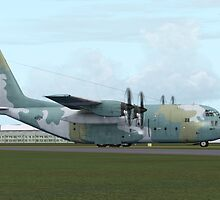 Lockheed C-130 Hercules by Walter Colvin