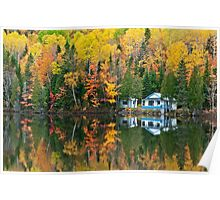 Forest and house Reflections Poster