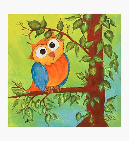 Whimsical Owl Photographic Print
