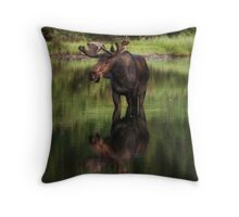 Reflecting Bull - Many Glacier Throw Pillow