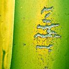 Heiroglyph by Scott  Cook