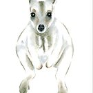Wallaby I by Jennie L. Richards