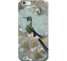 Esmeralda iPhone / iPod Case iPhone Case/Skin