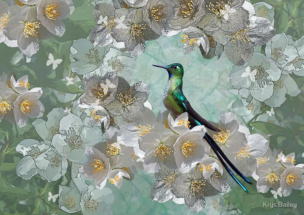 Esmeralda by Krys Bailey