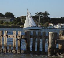 Sailing or Fencing? by Stuart Daddow Photography