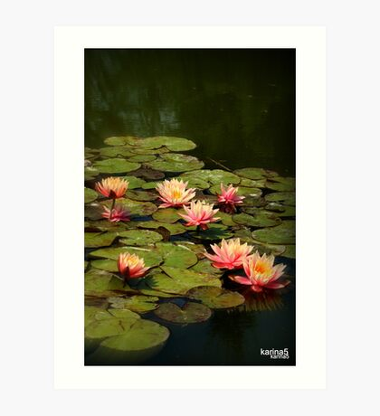 Water Lilies popping off the Screen Art Print