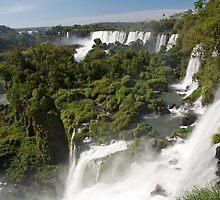 Iguazu Falls - Argentina by Dev Wijewardane