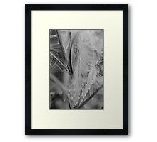 questions Framed Print
