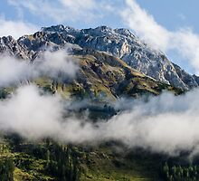 Austrian Alps by ericrmc