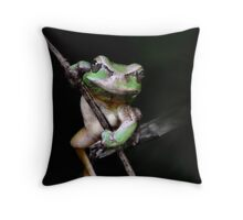 R U looking at me?!! Throw Pillow