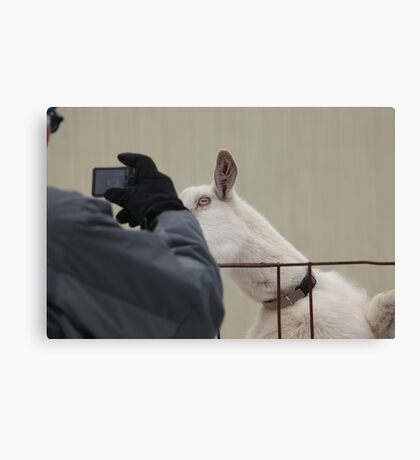 """""""Make Sure You Get My Best Side """" Canvas Print"""