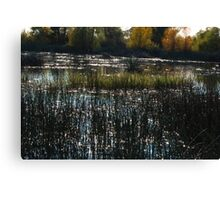 Just a Gorgeous Day! Canvas Print