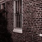 Barred Window by xBlondieMoments