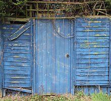 Blue Door by Adam Wain