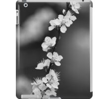 Desperately Seeking Light iPad Case/Skin