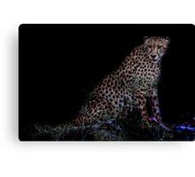 Cheetah in Africa Canvas Print