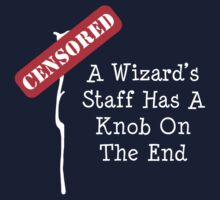 Discworld - A Wizard's Staff Has A Knob On The End by PaulRoberts