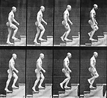 Man ascending stairs, from 'Animal Locomotion', 1887 by Bridgeman Art Library