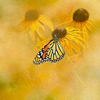 Hey Susan There's That Butterfly Again by Diane Schuster