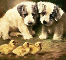 Sealyham Puppies and Ducklings by Bridgeman Art Library