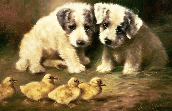 Sealyham Puppies and Ducklings by Bridgeman Art Library