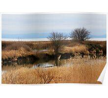 Reifel Bird Sanctuary Poster