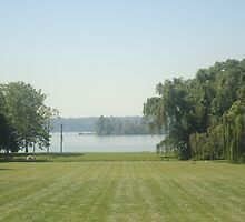 big lawn with nice water by masoney