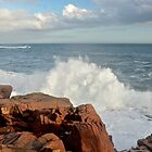 Pounding Surf of Acadia by Dan Hatch