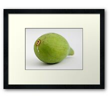 Green Fig Framed Print