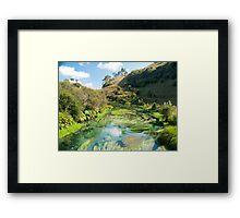 te waihou river  Framed Print