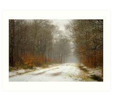 Mist and snow Art Print