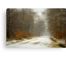 Mist and snow Canvas Print