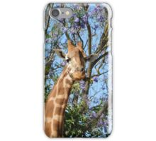 Giraffe and jacaranda  iPhone Case/Skin