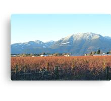 Moutains Fall Down On Me Canvas Print