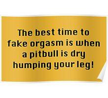 Time To Fake Orgasms Poster