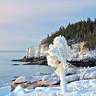 Ice-Laden Coastline,  Acadia, Maine by Dan Hatch