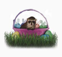 Easter Raccoon by jkartlife