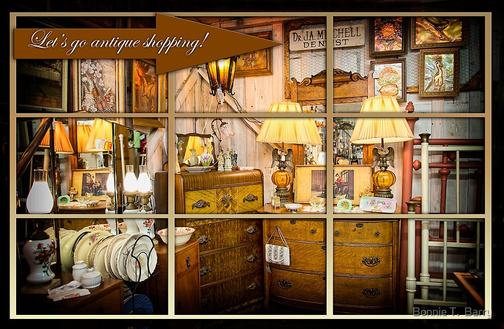 Let's go antique shopping! by Bonnie T.  Barry